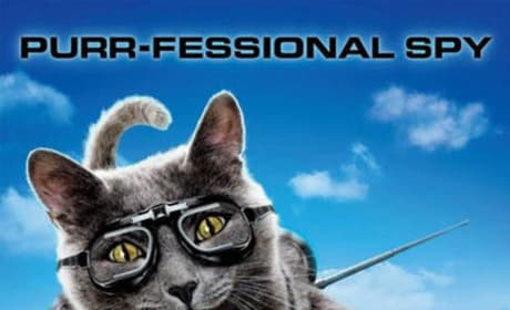 Cats and Dogs Purr Fessional Spy Poster