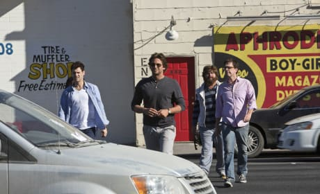 The Wolfpack from The Hangover Part III