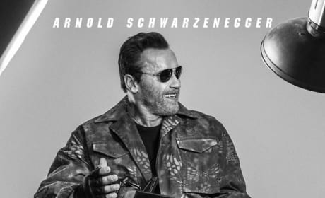 The Expendables 3 Arnold Schwarzenegger Poster