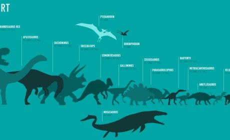 Jurassic World Size Chart