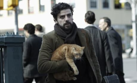 Inside Llewyn Davis Review: Coen Brothers Hit the Right Notes