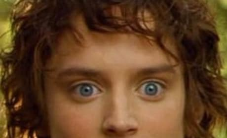 Elijah Wood: Excited About The Hobbit
