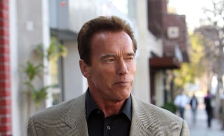 Arnold Schwarzenegger Talks Potential Movie Roles
