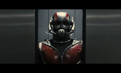 Ant-Man Debuts