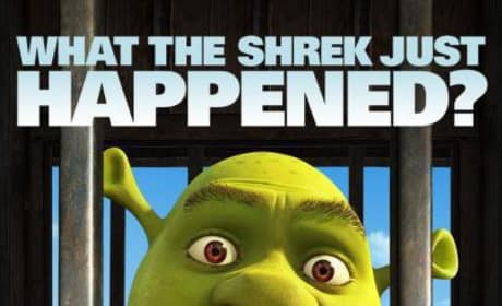 Witty Taglines Head Up Shrek Forever After Character Posters