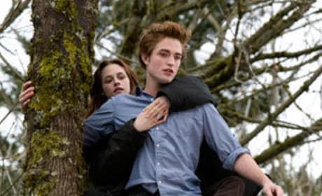 More Buzz About a Twilight Sequel