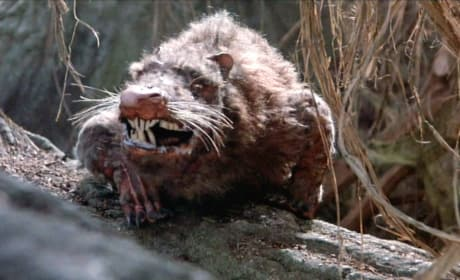 The Princess Bride The Rodents of Unusual Size