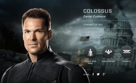 X-Men Days of Future Past Colossus Bio Banner
