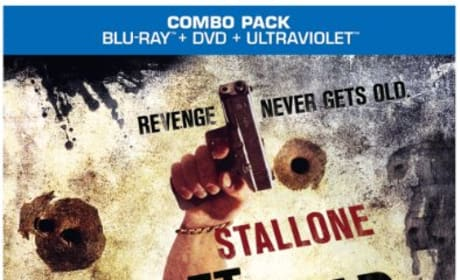 Bullet to the Head DVD/Blu-Ray Combo Pack