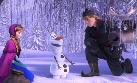 Frozen Crosses $1 Billion Mark: Best Animated Feature Raking In Bucks!