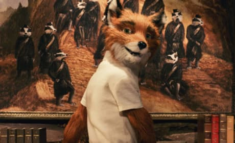 The fantastic Mr. Fox!