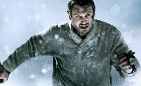 The Grey Movie Review: Liam Neeson Astounds