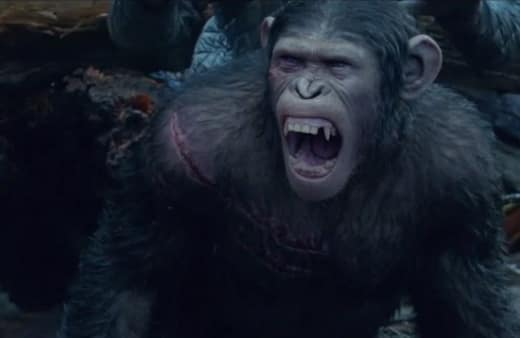 Dawn of the Planet of the Apes Photo Still