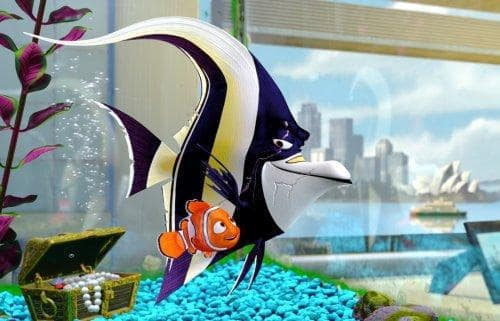 Gill and Nemo