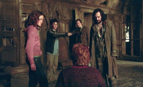 Harry, Hermione and the Prisoner