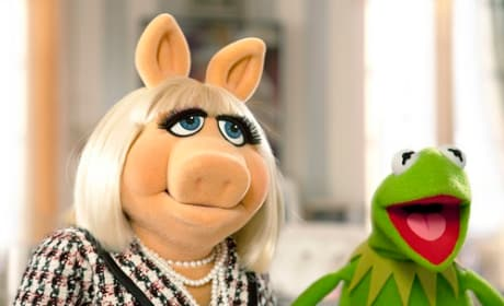 Kermit and Miss Piggy from The Muppets