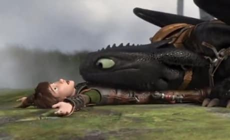 How to Train Your Dragon 2 Toothless Hiccup