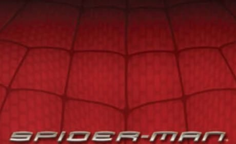 The Amazing Spider-Man Sequel Has a Writer