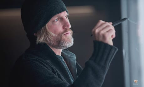 Mockingjay Woody Harrelson