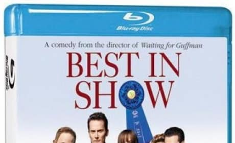 Best in Show Blu-Ray Review: Going to the Dogs