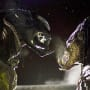 Aliens vs. Predator: Requiem Photo