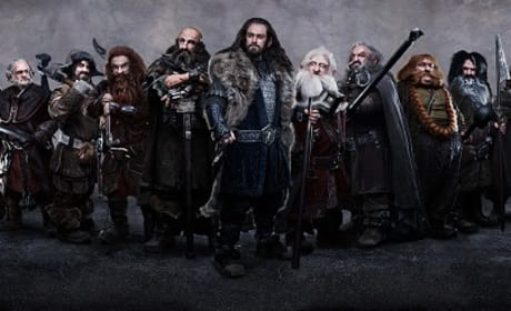 The Dwarf Fighters from The Hobbit