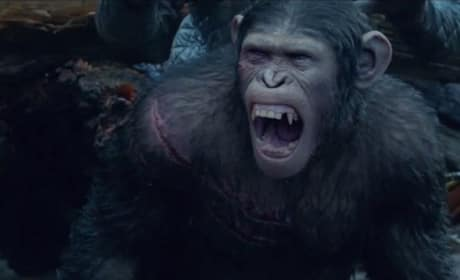 Dawn of the Planet of the Apes Purges The Purge Anarchy: Weekend Box Office Report