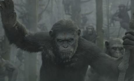 Dawn of the Planet of the Apes Cast Chat Sequel: First Caesar Image Revealed