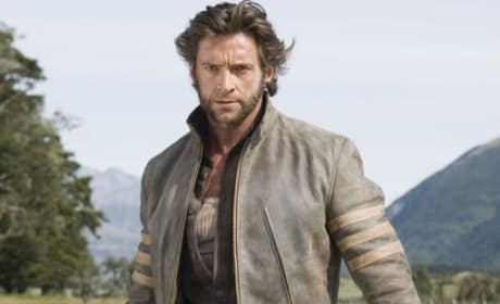 Photo of Wolverine