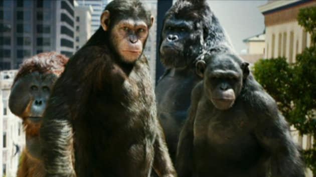 All Apes Accounted For