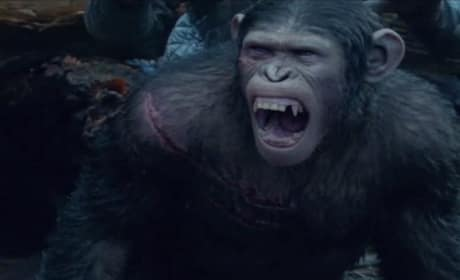 Dawn of the Planet of the Apes TV Trailer: Kill Every Last One of Them