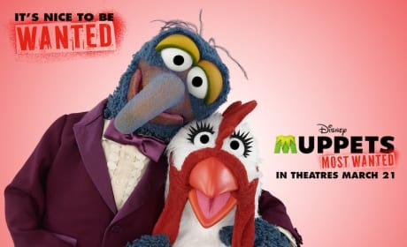 Muppets Most Wanted Valentine's Day Card
