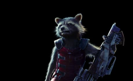 Guardians of the Galaxy Rocket Raccoon Picture