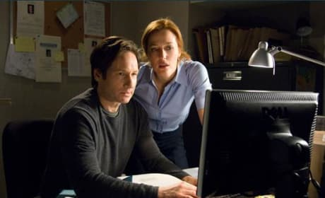 Mulder and Scully on their computer