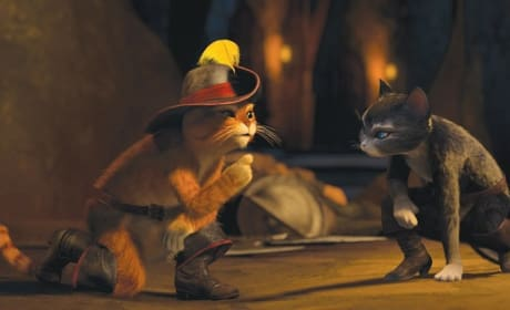 Antonio Banderas and Salma Hayek Interview: Puss in Boots' Kitties Take Center Stage