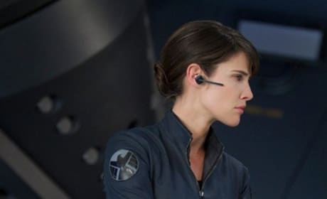 The Avengers Stars Cobie Smulders