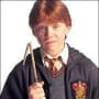 Ron Weasley Picture