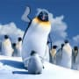 Elijah Wood Stars in Happy Feet 2