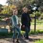 Matt Damon and Scarlett Johansson in We Bought a Zoo