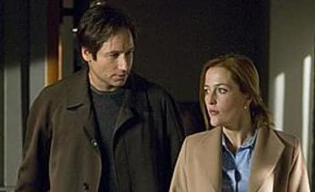 Mulder and Scully in X-Files 2!