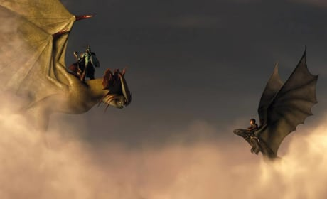 How to Train Your Dragon 2 Dragon Faceoff
