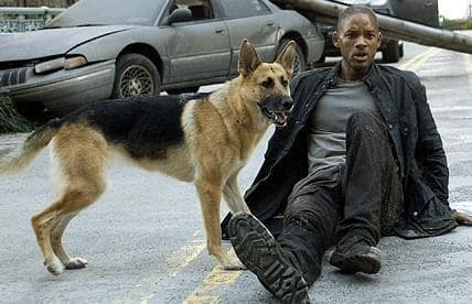 I Am Legend Picture