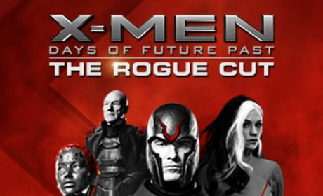 X-Men: Days of Future Past Rogue Cut Poster