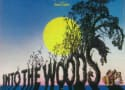 Into the Woods Looks to Add Johnny Depp and Meryl Streep