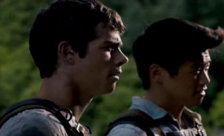 The Maze Runner Trailer: The Rules Revealed!