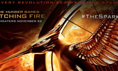 Catching Fire Twitter Header
