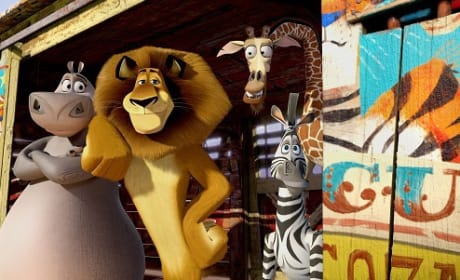 Madagascar 3 Cast Chats Craziness of Europe's Most Wanted