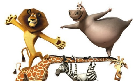 The Cast of Madagascar 3