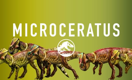 Jurassic World Microceratus