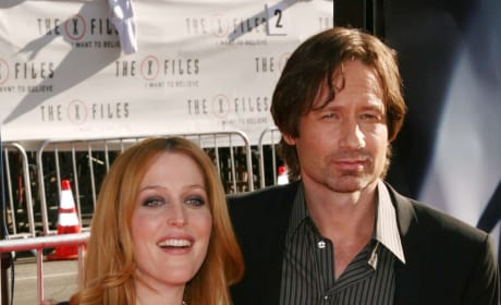 David Duchovny and Gillian Anderson Pose on the Red Carpet